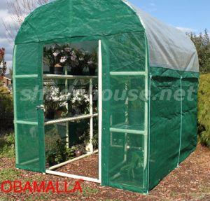 plants inside on shadehouse in garden